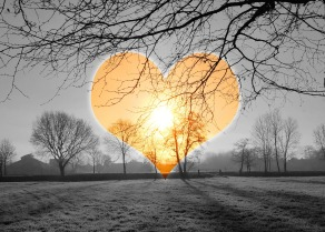 heart-590222_1920